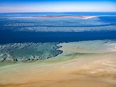 Faure Island_Shark Bay_DSF1743