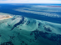Shark Bay_DSF1724