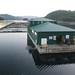 Barnes Bay Fish Farm