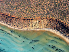 Shark Bay_Francois National Park_DSF1500