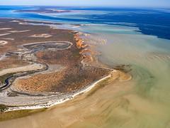 Shark Bay_Faure Island_DSF1587