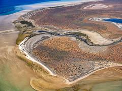 Shark Bay_Faure Island_DSF1575