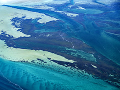 Shark Bay_DSF1555