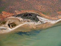 Shark Bay_Francois National Park_DSF1563