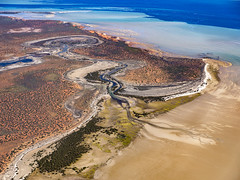 Shark Bay_Faure Island_DSF1595