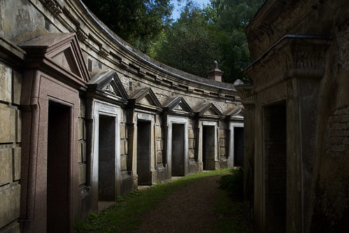 "Circle of Lebanon, Highgate Cemetery • <a style=""font-size:0.8em;"" href=""http://www.flickr.com/photos/66868863@N00/50302191863/"" target=""_blank"">View on Flickr</a>"