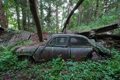 Rust N' Green