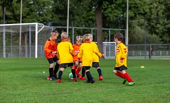 Onder 8 / F-League