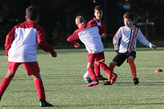 """HBC Voetbal • <a style=""""font-size:0.8em;"""" href=""""http://www.flickr.com/photos/151401055@N04/50314355943/"""" target=""""_blank"""">View on Flickr</a>"""