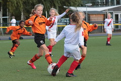 """HBC Voetbal • <a style=""""font-size:0.8em;"""" href=""""http://www.flickr.com/photos/151401055@N04/50314382913/"""" target=""""_blank"""">View on Flickr</a>"""