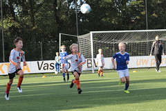 """HBC Voetbal • <a style=""""font-size:0.8em;"""" href=""""http://www.flickr.com/photos/151401055@N04/50315014501/"""" target=""""_blank"""">View on Flickr</a>"""