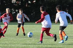 """HBC Voetbal • <a style=""""font-size:0.8em;"""" href=""""http://www.flickr.com/photos/151401055@N04/50315023931/"""" target=""""_blank"""">View on Flickr</a>"""