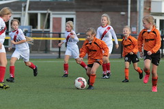 """HBC Voetbal • <a style=""""font-size:0.8em;"""" href=""""http://www.flickr.com/photos/151401055@N04/50315053751/"""" target=""""_blank"""">View on Flickr</a>"""