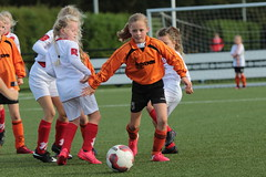 """HBC Voetbal • <a style=""""font-size:0.8em;"""" href=""""http://www.flickr.com/photos/151401055@N04/50315053951/"""" target=""""_blank"""">View on Flickr</a>"""
