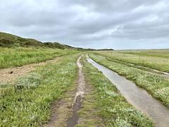 Slufter valley (Texel, The Netherlands 2020)