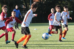 """HBC Voetbal • <a style=""""font-size:0.8em;"""" href=""""http://www.flickr.com/photos/151401055@N04/50315203492/"""" target=""""_blank"""">View on Flickr</a>"""