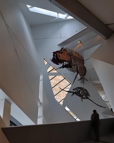 Paleontology  gallery, Royal Ontario Museum, Bloor-Yorkville, Toronto
