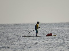Stand up paddle practice • Prática de Stand up paddle • Práctica de stand up paddle