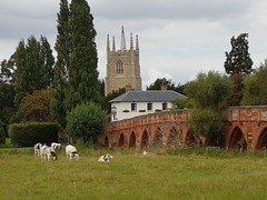 Photo of The bridge at Great Barford