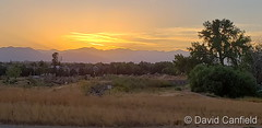 September 3, 2020 - A beautiful sunset in Broomfield. (David Canfield)