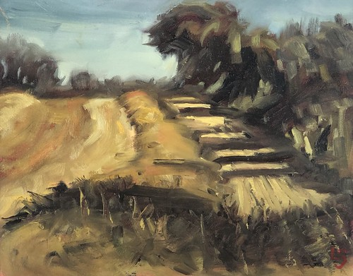 Harvest, Loughshinny Oil on canvas 10x8inches  €250 framed