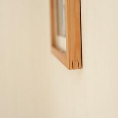 dovetailed veneer splines