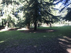 Photo of View from bench at Coombe country park
