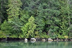 Mortimer Spit Park on South Pender Island, BC  -  (Published by GETTY IMAGES)