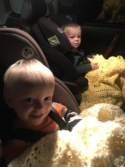 """Luc and Sam in Front-Facing Car Seats • <a style=""""font-size:0.8em;"""" href=""""http://www.flickr.com/photos/109120354@N07/50336485798/"""" target=""""_blank"""">View on Flickr</a>"""