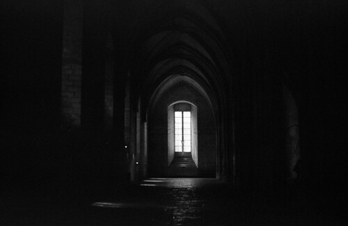 """Gothic Passage  (Proimage 100) • <a style=""""font-size:0.8em;"""" href=""""http://www.flickr.com/photos/65969414@N08/50338555916/"""" target=""""_blank"""">View on Flickr</a>"""
