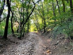 trieste-urban-trail-18