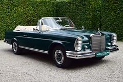 The ex-Pat di Cicco Mercedes 220 SEb Convertible.