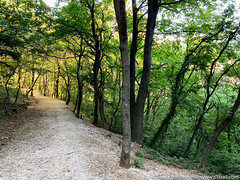 trieste-urban-trail-19
