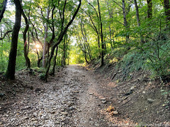 trieste-urban-trail-17