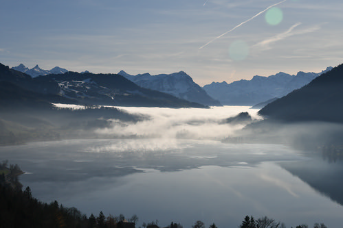 """The Pouring Fog • <a style=""""font-size:0.8em;"""" href=""""http://www.flickr.com/photos/65969414@N08/50345779608/"""" target=""""_blank"""">View on Flickr</a>"""