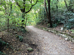 trieste-urban-trail-16