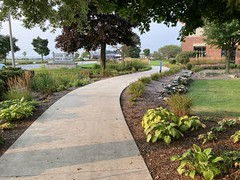 Library Trail