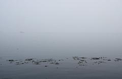 20200916 Oak Bay Ghost Boat