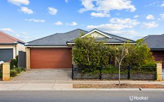 53 Hayfield Avenue, Blakeview SA