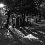 low sun in the cemetery