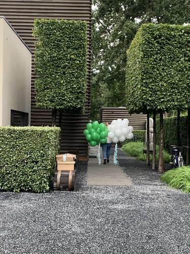 Heliumballonnen Groen Wit