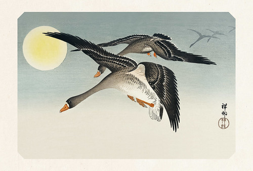 58-Carte postale // 10x15cm // Birds at Full Moon