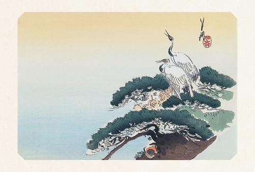 63-Carte postale // 10x15cm // Cranes on Pine