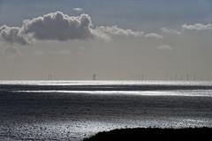 Photo of Wind Catchers