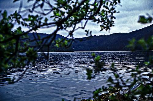 """Norwegen 1998 (706)Trøndelag • <a style=""""font-size:0.8em;"""" href=""""http://www.flickr.com/photos/69570948@N04/50358263061/"""" target=""""_blank"""">View on Flickr</a>"""