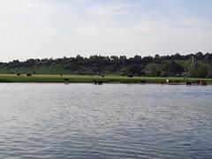 Photo of Maidenhead half loop recce run 2