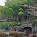 Along the Nakasendo Trail - Japan