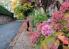 Photo of Autumn scene