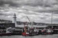 Photo of Macduff Harbour