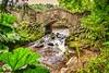Dunster Castle stream